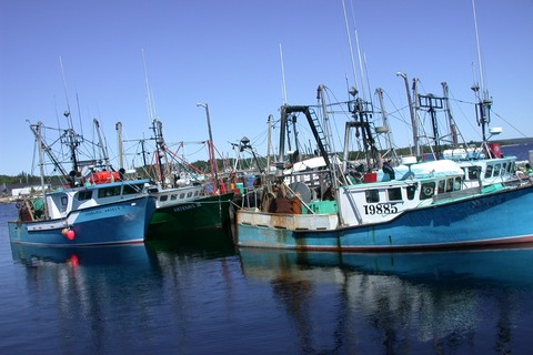 fishing in nova scotia, cape island boats nova scotia, nova scotia fishing vessels