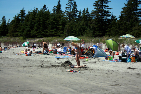 beaches, nova scotia, beach, rissers beach, lunenburg, provincial park, swimming, seashore, kids